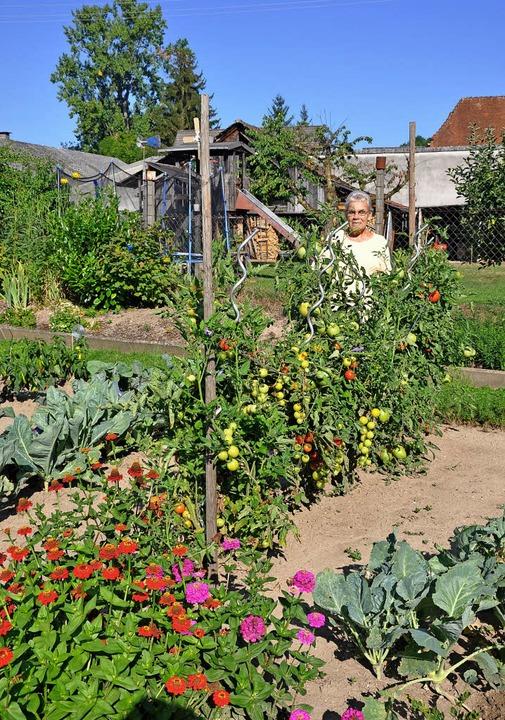 Auf kleinem Raum pflanzt Rita Brendlin...u einem richtigen Bauerngarten gehört.  | Foto: Jutta Schütz