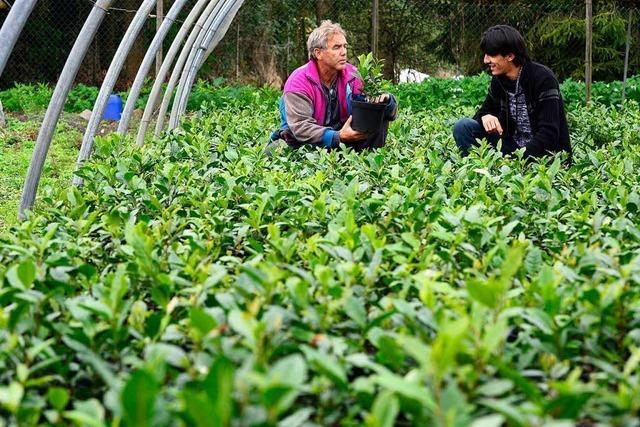 Wo Südbadens Landwirte zu Pionieren werden