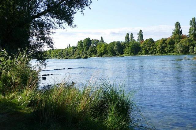 Die Empörung über Exhibitionisten am Rheinufer ist – wieder einmal – groß