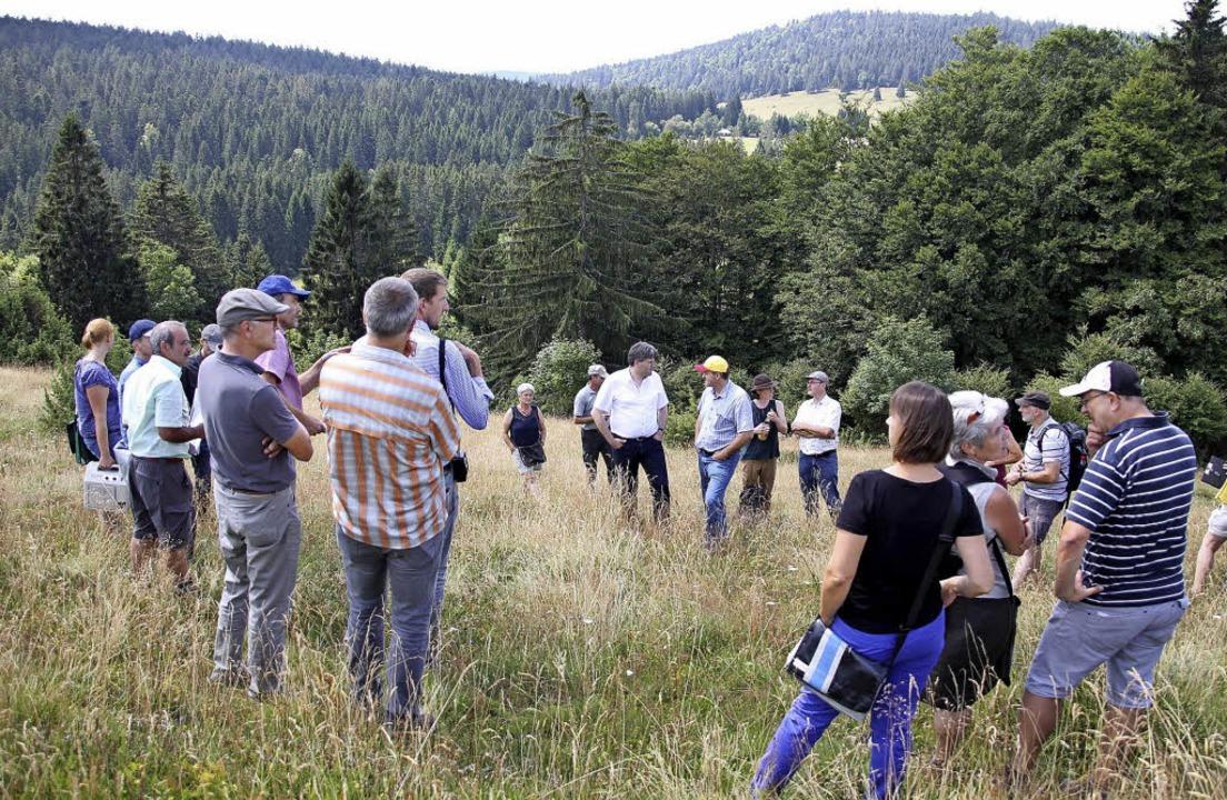 Die Exkursionsgruppe auf dem  Weidberg in Ibach.  | Foto: Naturpark Südschwarzwald