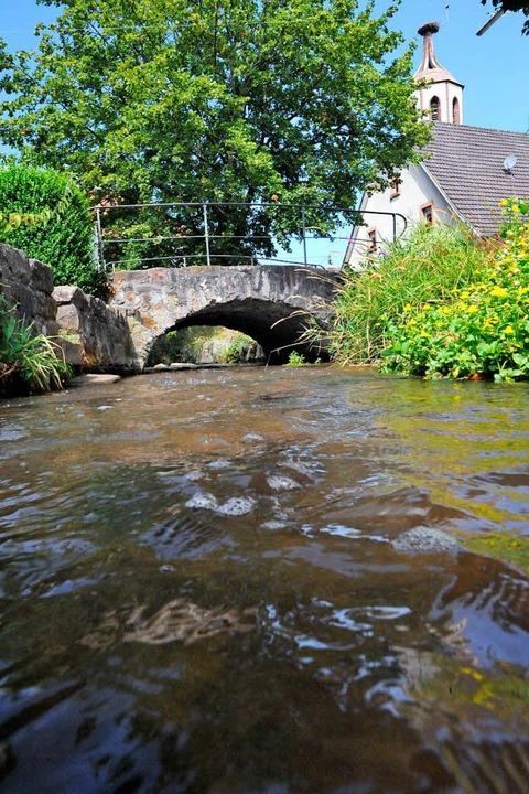 Innerhalb Denzlingens hat die Glotter noch Wasser (Bild vom 2. August).  | Foto: Markus Zimmermann
