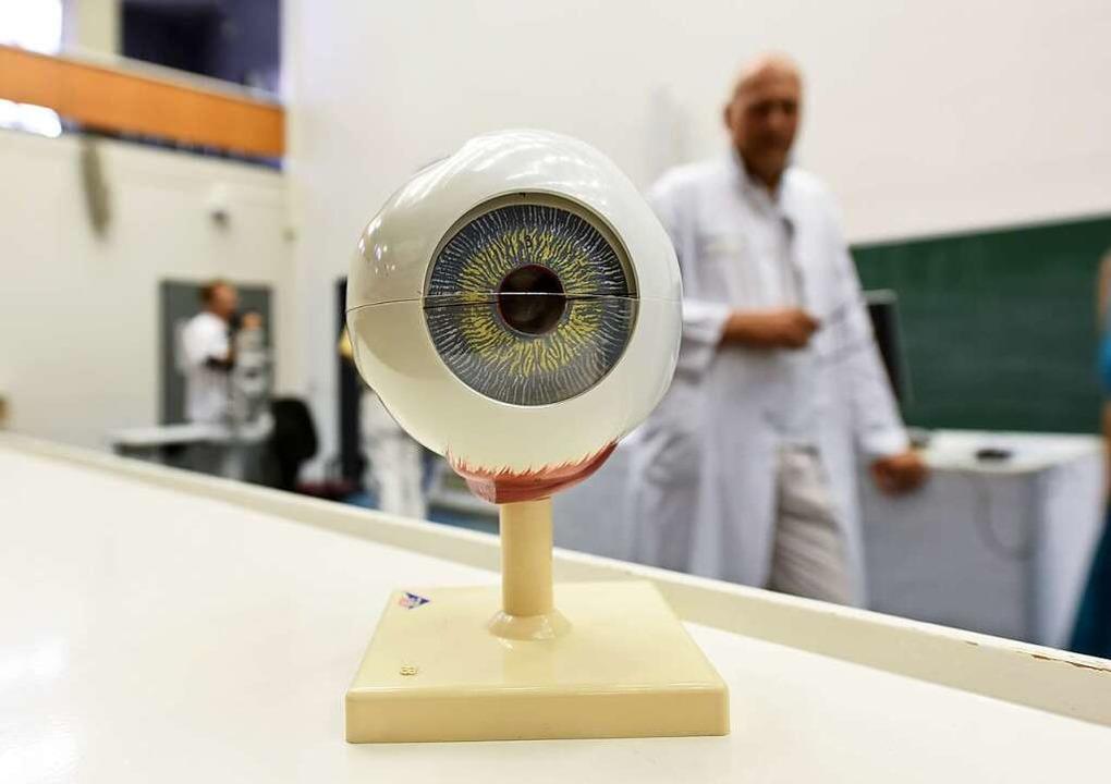 Ein Auge zum fürchten – oder ehe...enklinik, wie das Organ aufgebaut ist.  | Foto: Rita Eggstein