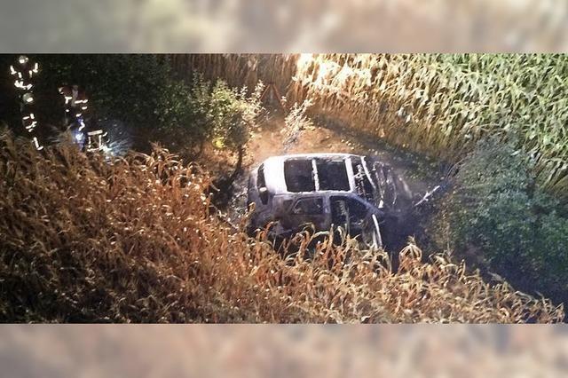 Auto ohne Nummernschilder brennt im Maisfeld aus