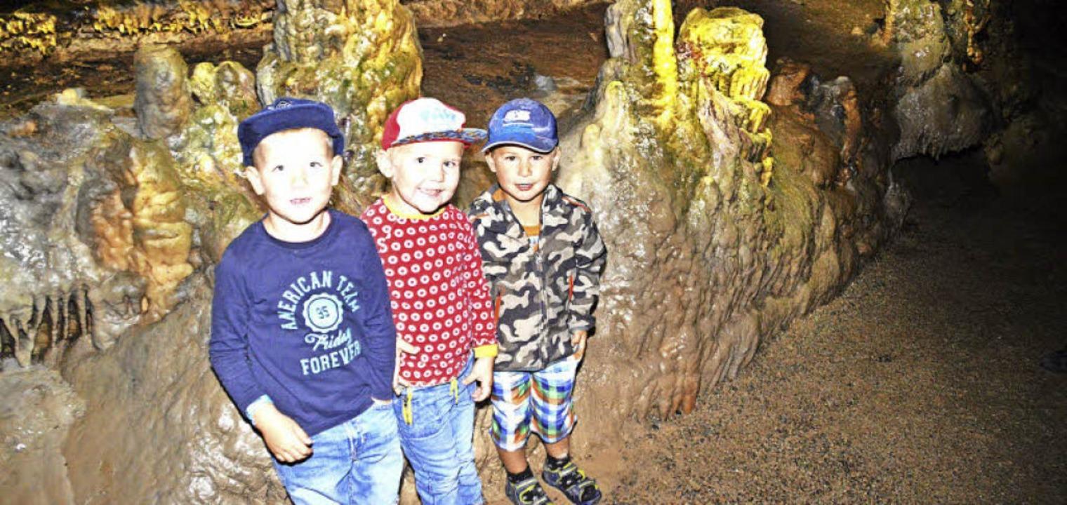 Gelungene Ausflugskombi für Kinder: Be...erientag für den Nachwuchs gesichert.   | Foto: Edgar Steinfelder