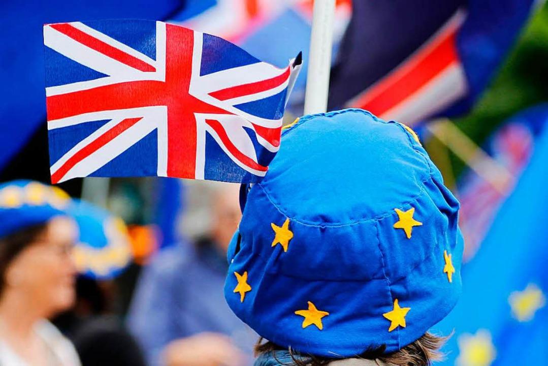 Eine Pro-EU-Demonstrantin vor dem Parlament in London   | Foto: afp