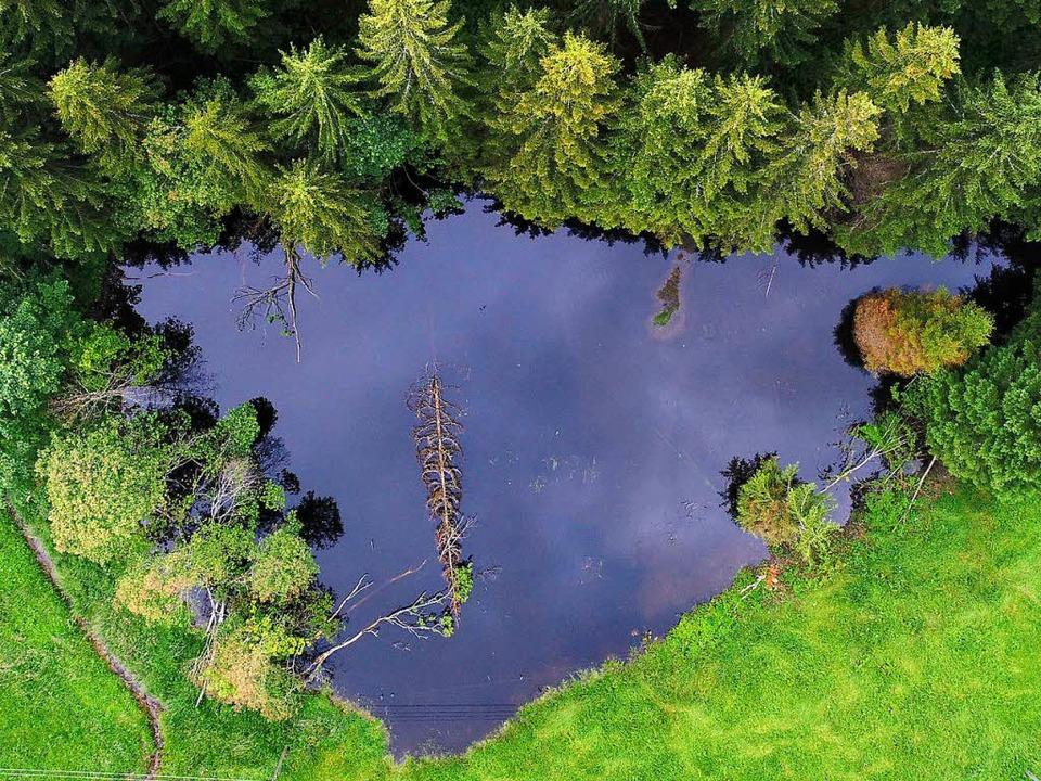 Der Blick von oben lässt den Weiher im... aus der Taiga entsprungen erscheinen.    Foto: Philippe Thines