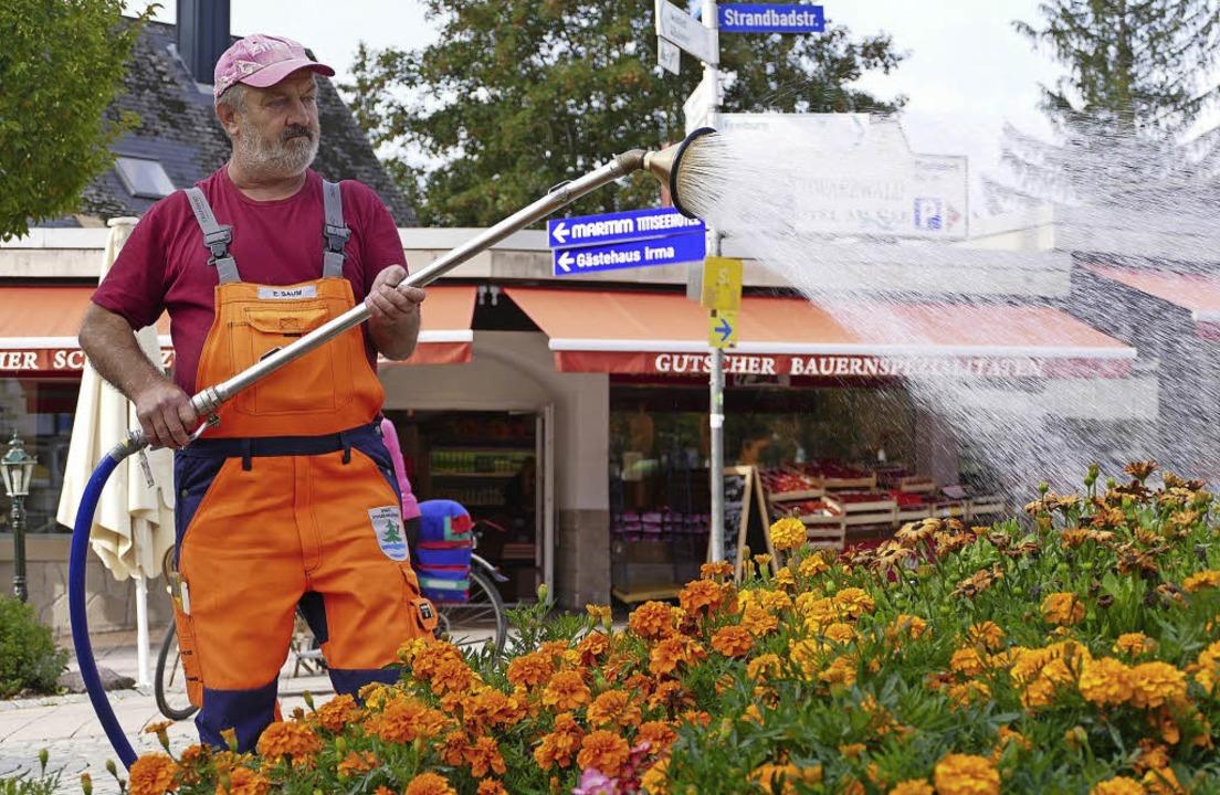 Ewald Saum beim Gießen in Titisee:  Di...das Wasser nur vormittags oder abends.    Foto: Wendelin Schnitzler