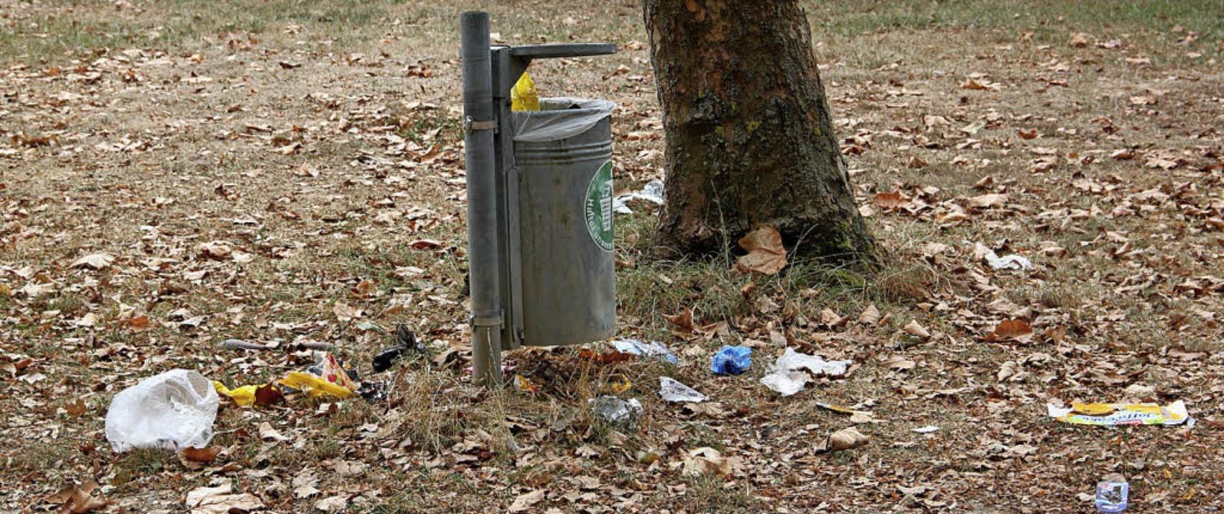 Plastiktüten liegen neben einem Mülleimer im Grütt.    Foto: Daniela Gschweng