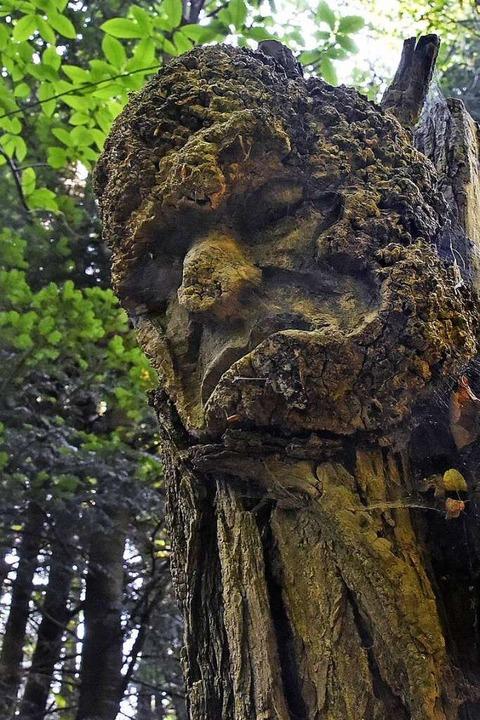 Eine Figur am Skulpturenpfad von Holzkünstler Thomas Rees  | Foto: Michael Bamberger