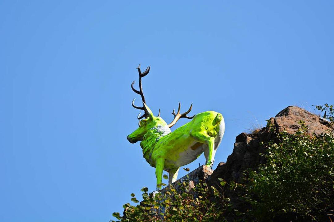 In Neongrün leuchtet der Hirsch seit einigen Tagen.  | Foto: kamera24
