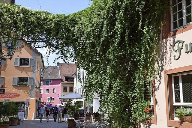 Kleinstadtperle Bad Säckingen