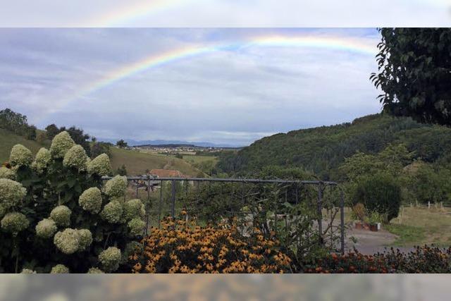 Regenbogen am Horizont von Freiamt