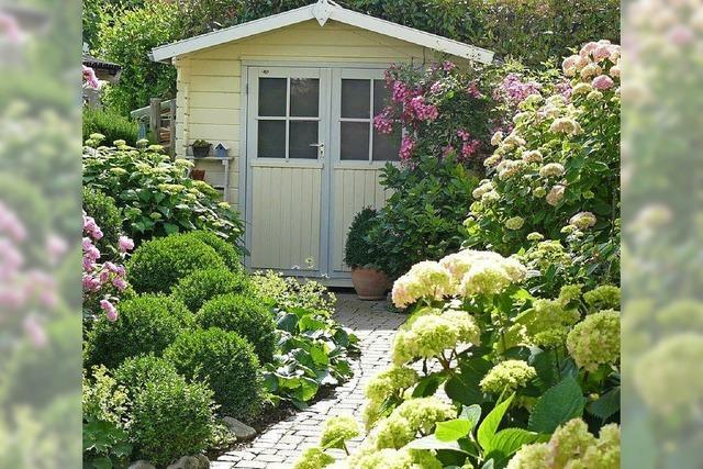 Ein Garten in Rosa, Pink und Lila