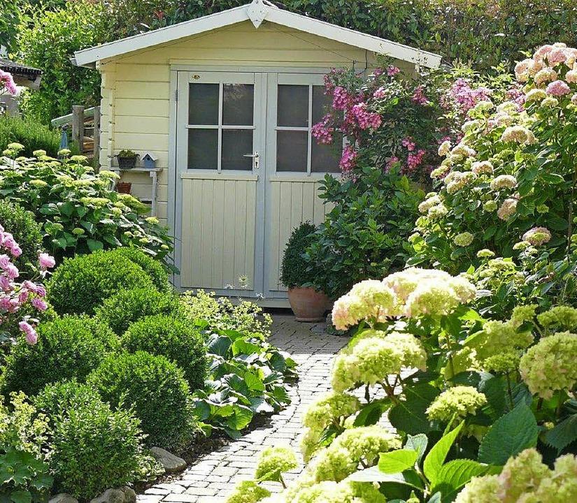 Im Garten von Christine Lehmann sind nicht nur die Hortensienbüsche<ppp></ppp>  | Foto: Christine Lehmann