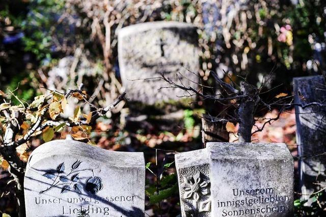 Interview: Wie sich der Umgang mit Totgeburten an Kliniken verändert hat