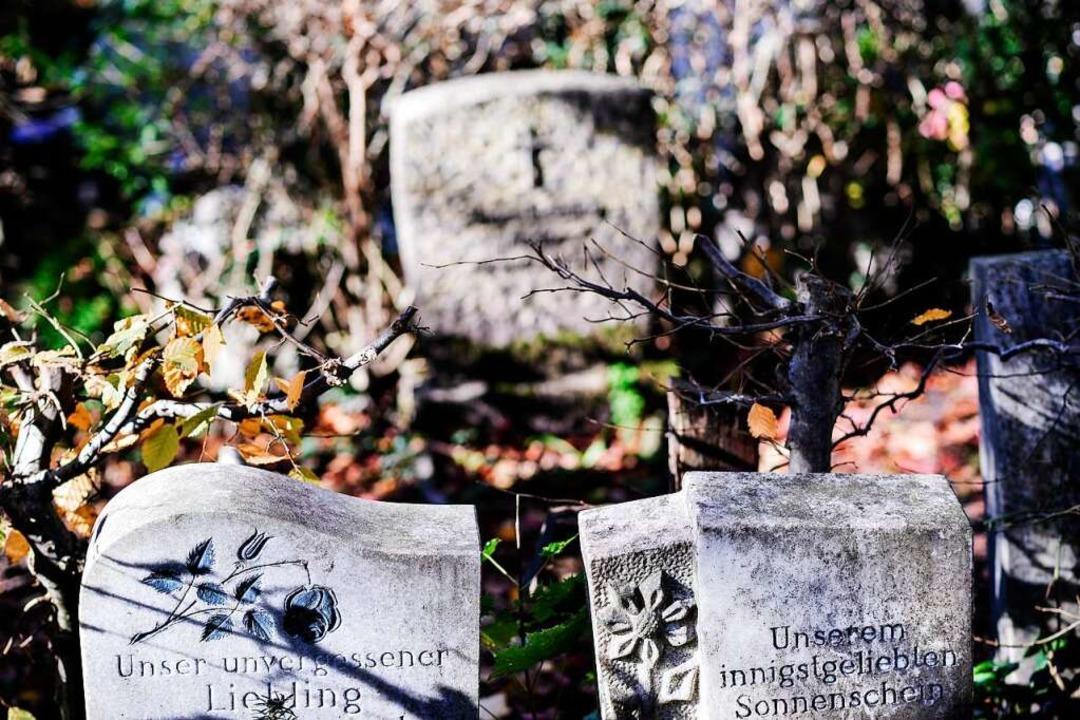 Heute können Eltern von ihren toten Kindern Abschied nehmen.  | Foto: David Ebener
