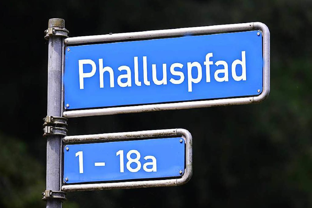 Achtung: Diese Straße gibt es nicht. Fake!  | Foto: Ingo Schneider/ Montage Fudder