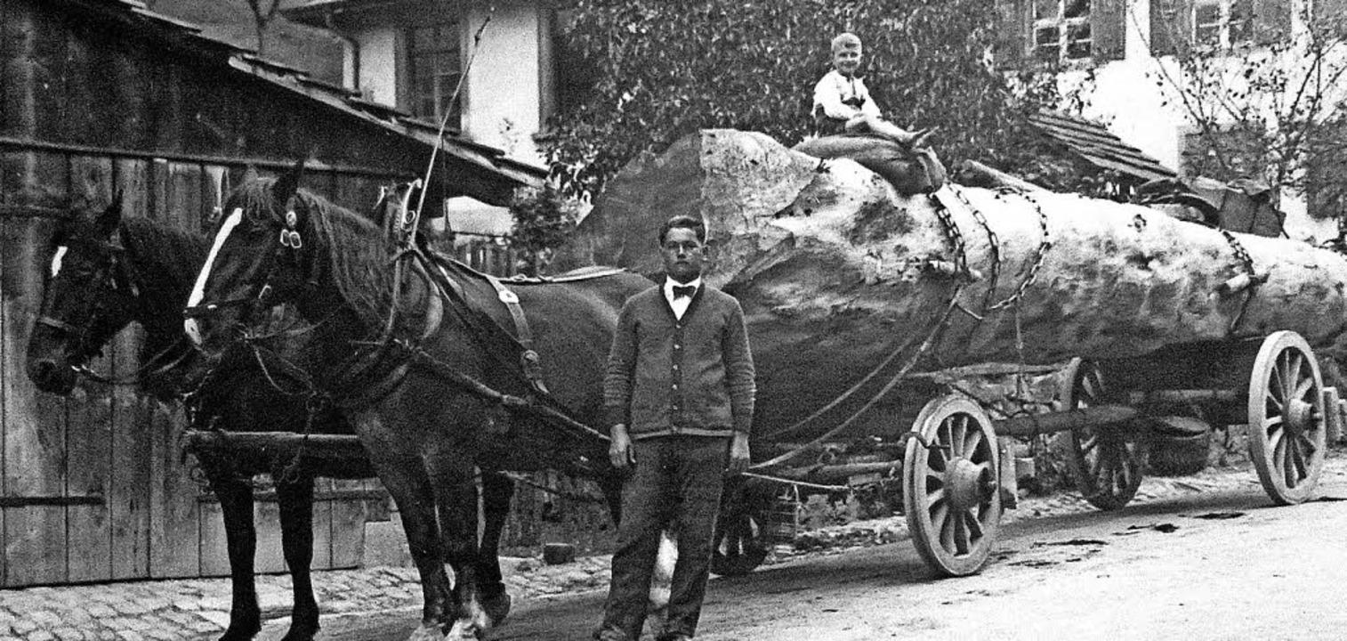 Historischer Holztransport in Bürchau  | Foto: Privat