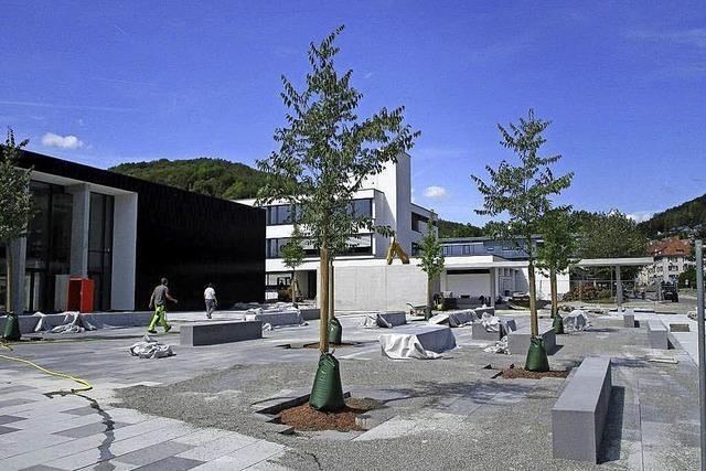 Bäume schmücken Vorplatz der Stadthalle
