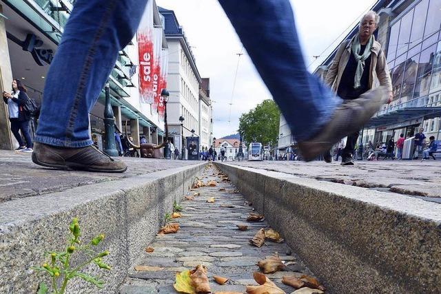 So viel muss es regnen, damit Freiburgs Bächle wieder Wasser führen