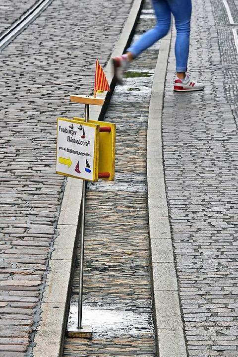 Eine trockene Angelegenheit: Die Bächl...tadt sind seit Mitte Juli ohne Wasser.  | Foto: Michael Bamberger