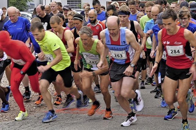 294 Läufer gehen auf die anspruchsvolle Strecke