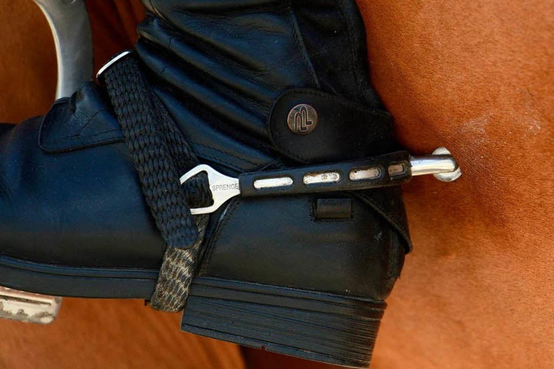 Verband räumt Probleme mit jungen Reitern ein    Foto: dpa