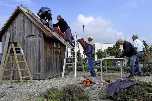Neues Dach fürs Rebhäusle