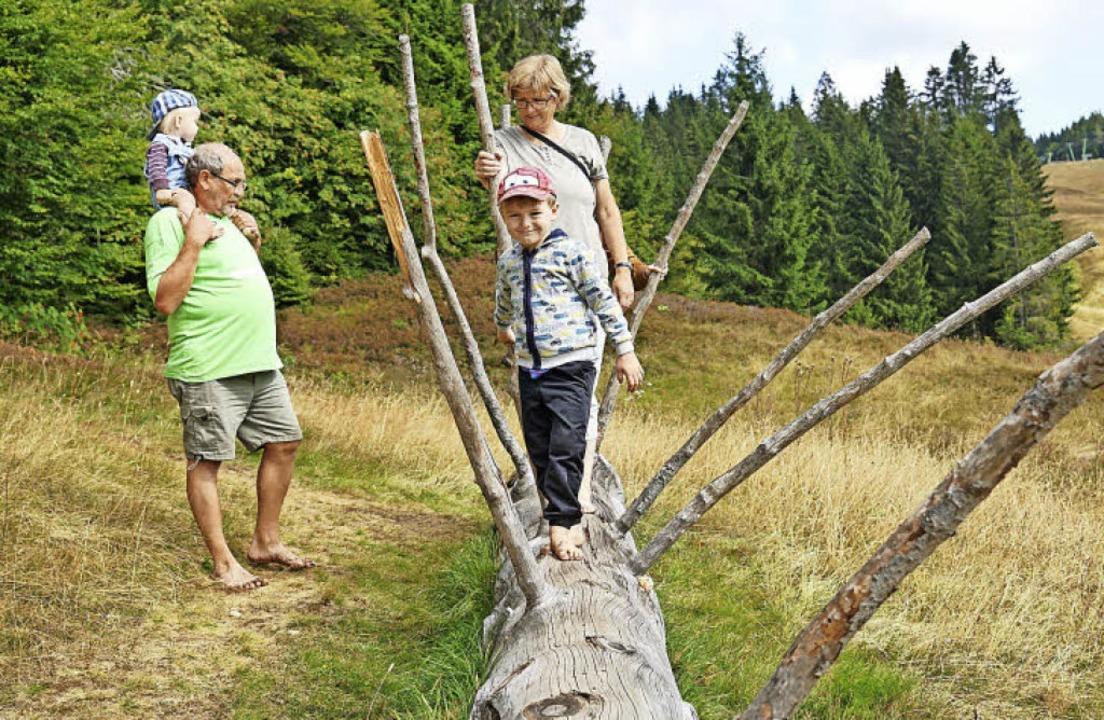 Auf 600 Metern Wegstrecke können auf d...n. Das gefällt nicht nur den Kindern.   | Foto: Verena Wehrle