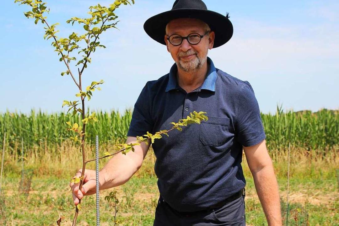 Markus Mayer mit einem geimpften Baum  | Foto: Michael Saurer