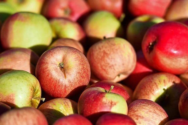 Zu viele Äpfel im Garten? Hier kann man das Obst spenden