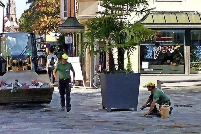 Nacharbeiten auf dem Lindenplatz