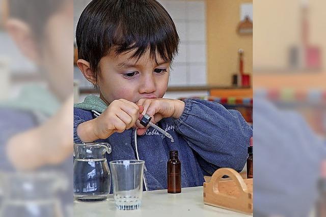 Das Kind als Erbauer seiner eigenen Intelligenz