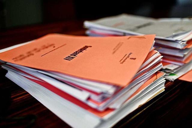 Expertenbericht: Behördenversagen im Staufener Missbrauchsfall