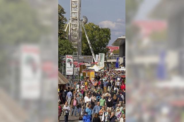 Mehr als 75 000 Besucher erwartet