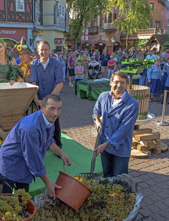 Demonstrierten Winzerarbeit beim Kaise...ens Schätzle (links) mit Bruno Metz.      Foto: Olaf Michel
