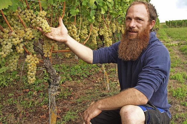 Der Traum vom eigenen Weingut