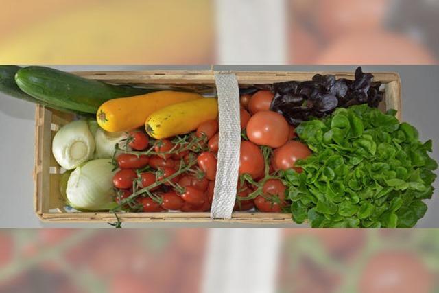 Gemüseanbau mit Vorzeigecharakter