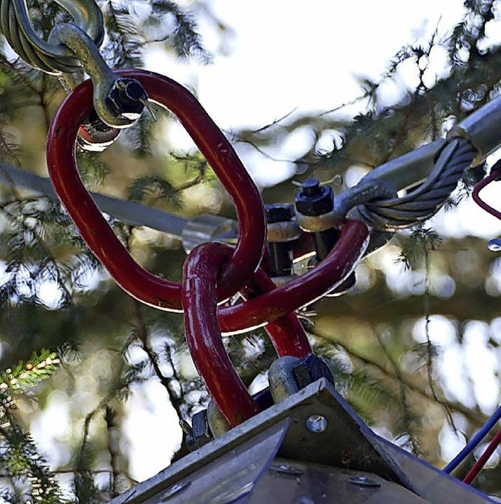 Über Drahtseile und Ringe ist das Baum... das Frühstück in der Spätsommersonne.  | Foto: Tanja Bury