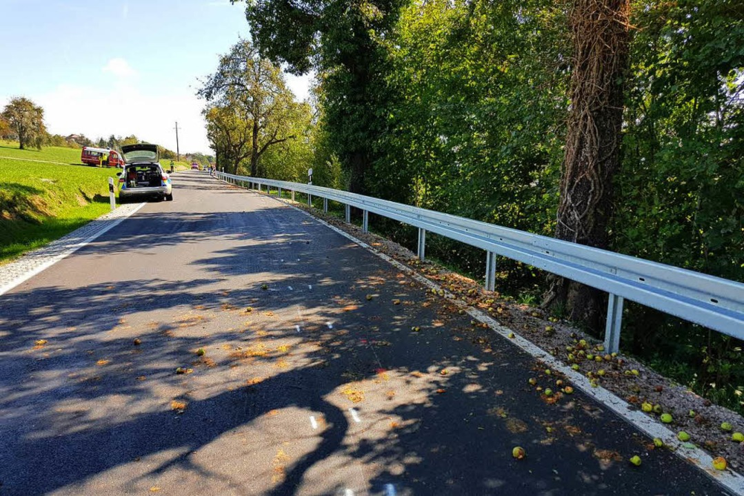 Schuld an dem Unfall könnten neben der...e Straße gefallene Äpfel gewesen sein.  | Foto: kamera24