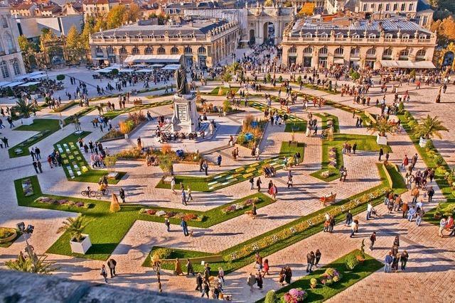 Entdecken Sie Nancy bei einer Stadtführung und das Museum der Schönen Künste bei einer Führung