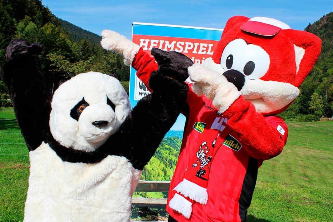 Panda trifft auf Füchsle.  | Foto: Erich Krieger