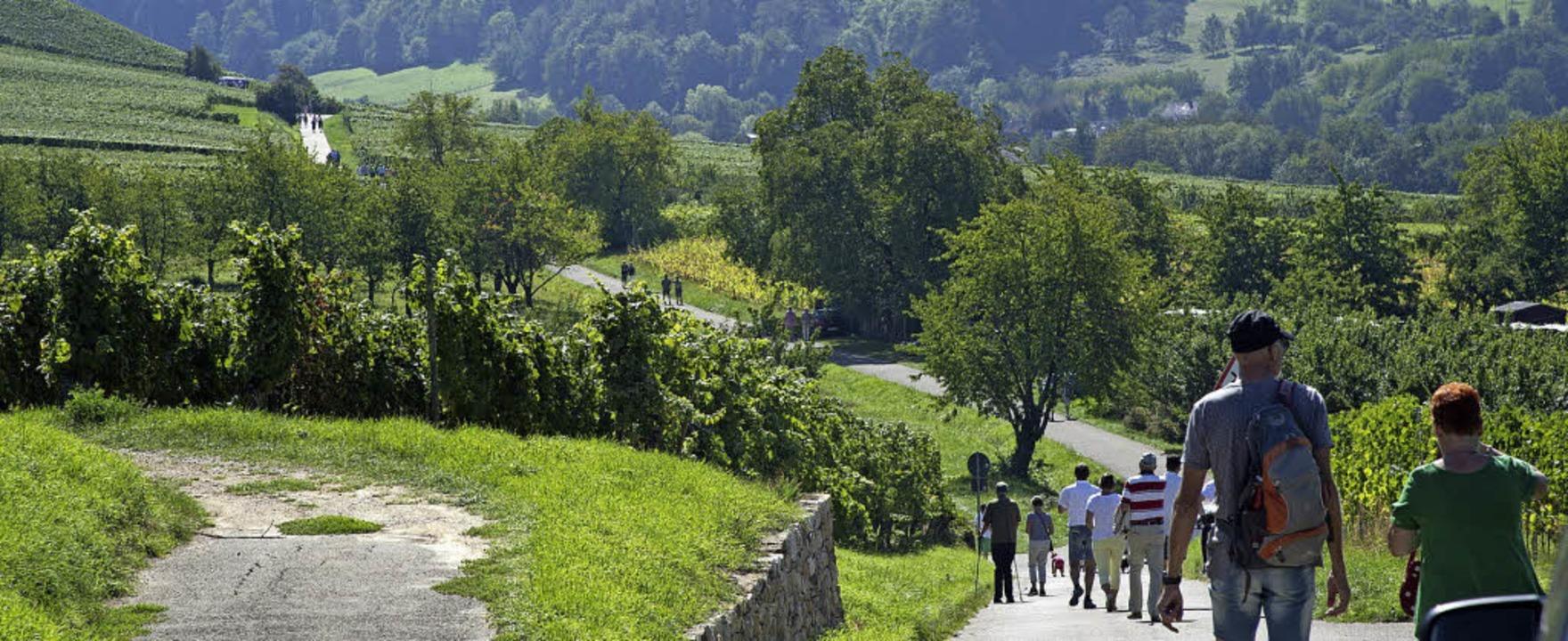 Viele nahmen den 3,4 Kilometer langen Rundweg unter die Füße.  | Foto: Volker Münch
