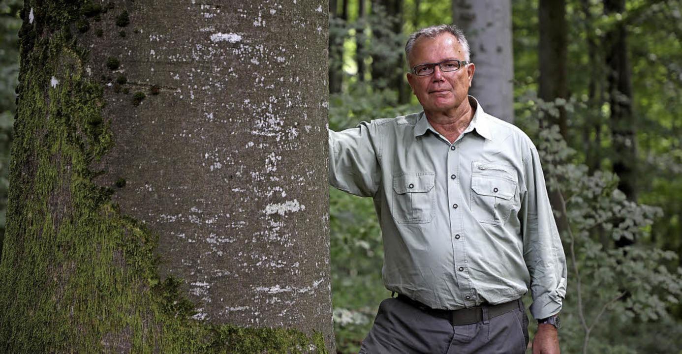 Bernhard Ihle an seinem Arbeitsplatz im Wald   | Foto: Christoph Breithaupt