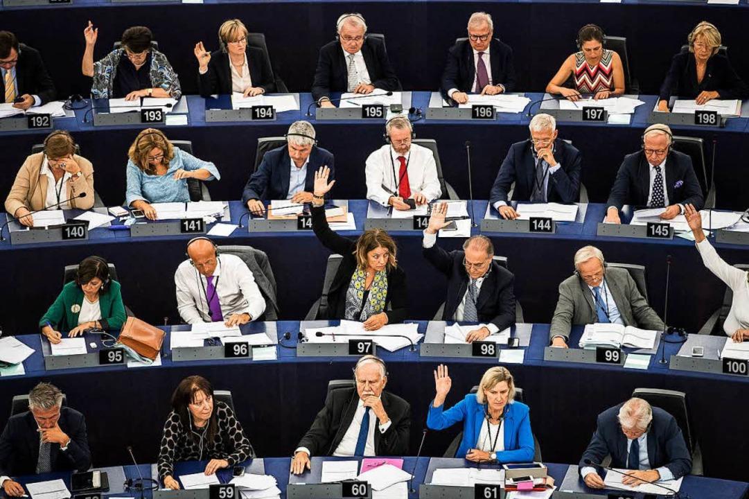 Abstimmung im Europaparlament  | Foto: dpa