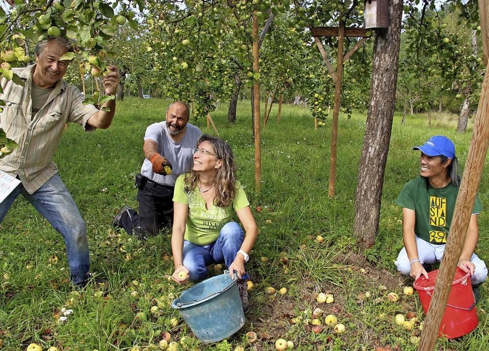 Sie waren bei der Ernte des Naturschut...rst, Petra Weinberger und Quocy Long.   | Foto: Horst David