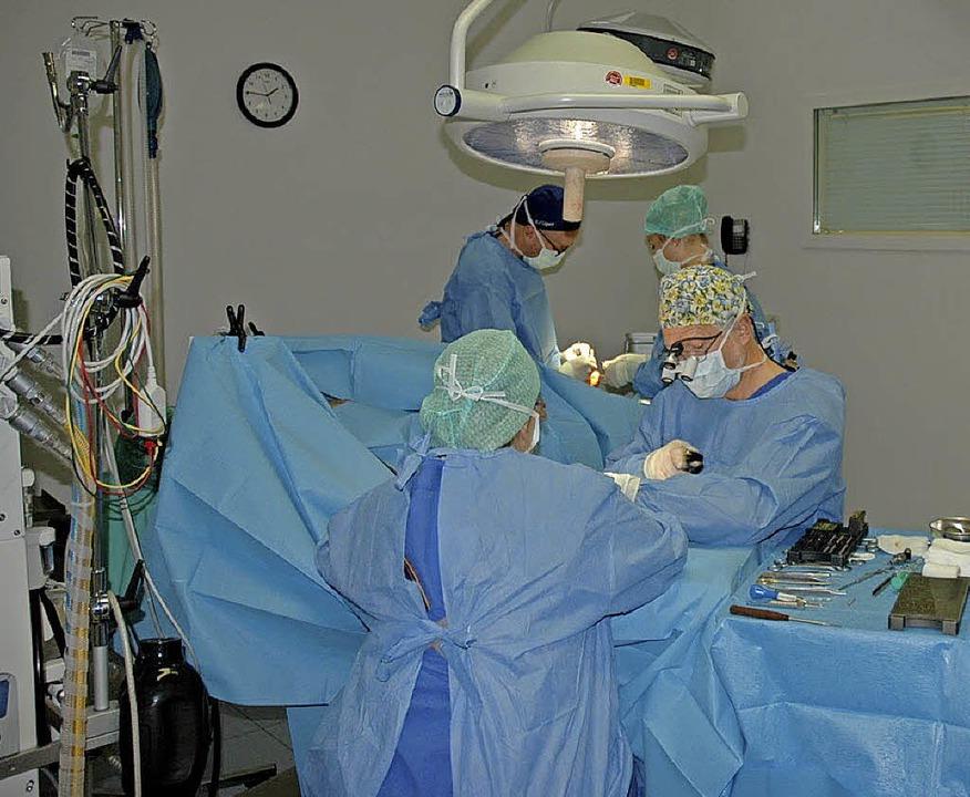 Jährlich finden mehr als 7000  Operati...die meisten sind ambulante Eingriffe.   | Foto: Praxisklinik