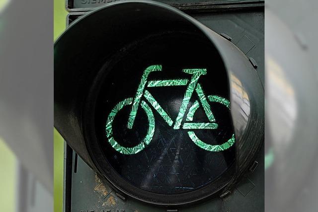 Abstimmen übers Radfahren in Lahr