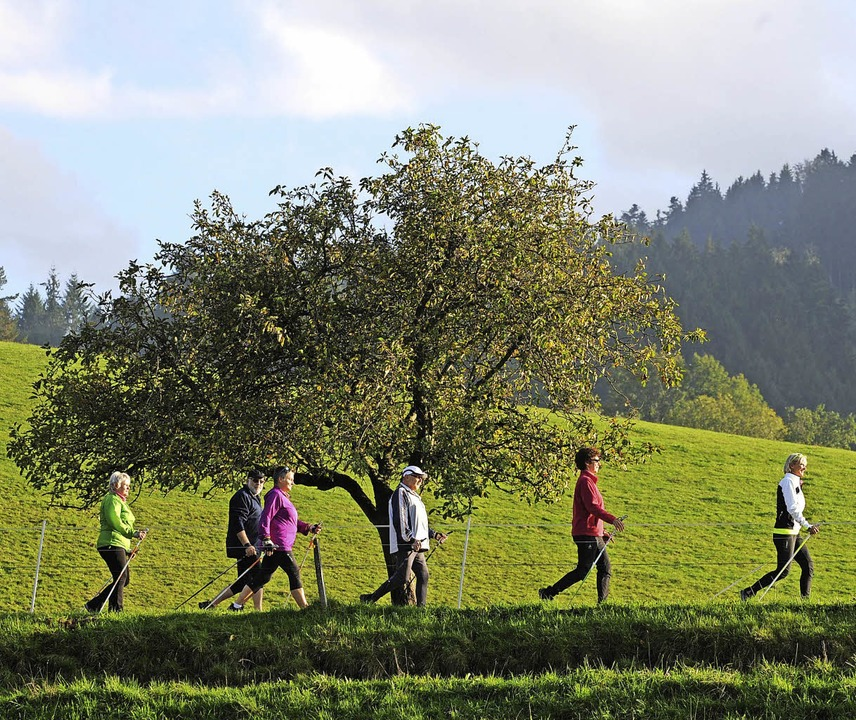 Nächste Woche bietet der PTSV Jahn Nor...ere an – einfach ausprobieren.    | Foto: Seeger/Kunz