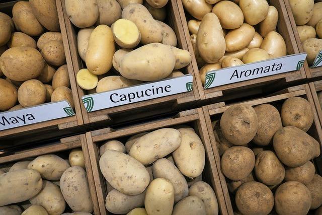 Kartoffeln werden knapp und teuer